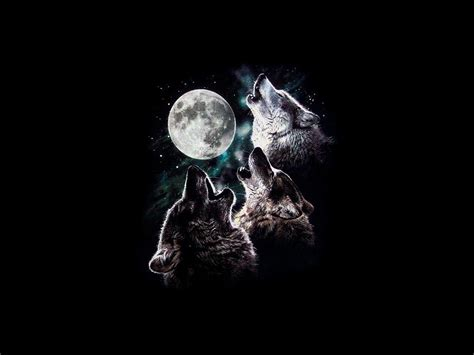 3 wolf moon howling moon sky three trio wolves