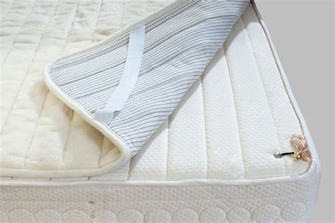 mattress cover for bed bugs the best mattress covers for bed bugs terminix