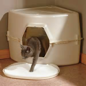 big litter box for cats catty corner litter box