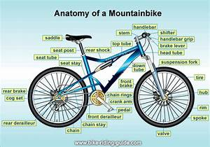 List Of Bicycle Parts