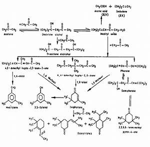 7  Formation Of Reaction Products In The Autocondensation