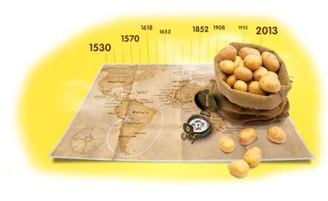 cuisiner la pomme de terre tout savoir sur la pomme de terre histoire variétés
