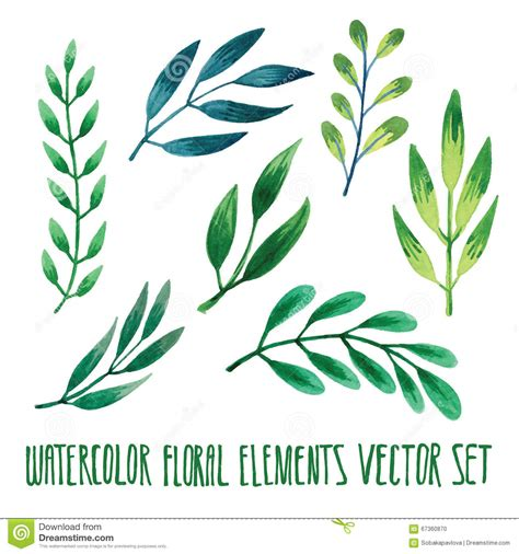 vector floral set colorful floral collection  leaves