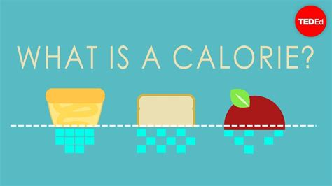 What Is A Calorie?  Emma Bryce  Youtube