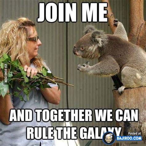 Hilarious Memes 2013 - funniest animal memes 2013 image memes at relatably com