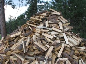 palmerston north firewood