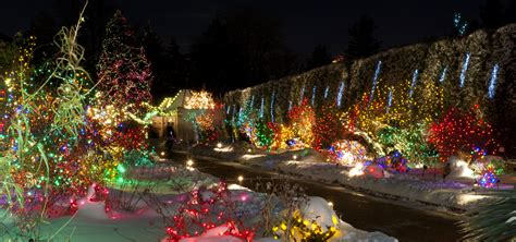 christmas light displays colorado swingle shares best places to view christmas lights in