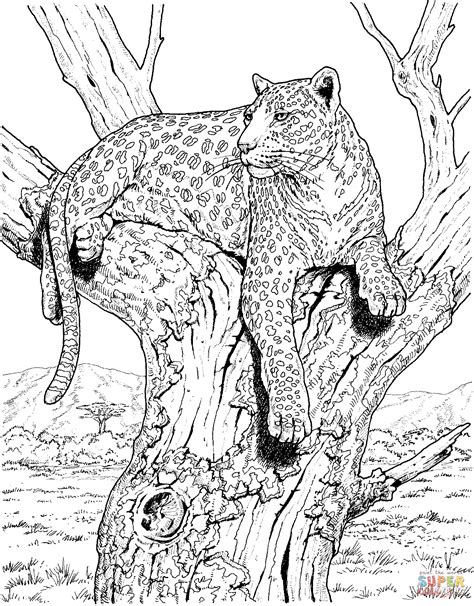 Leopard Sits On Tree Super Coloring Cat coloring page