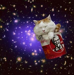 Cats In Space – Caterville