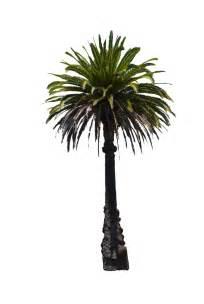 Palm Tree Stock