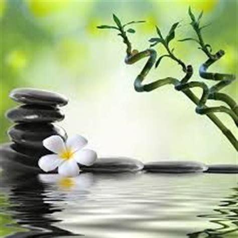 pot de fleur pour bambou 1000 images about zen deco feng shui on zen toile and stickers