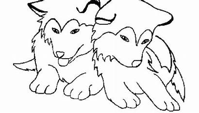 Coloring Husky Puppy Pages Dog Adults Face