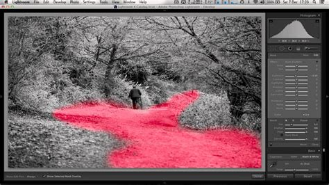 Coloring Lightroom by Adding Color To Black And White Photos In Lightroom