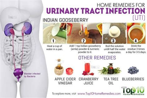 home remedies  urinary tract infection uti top