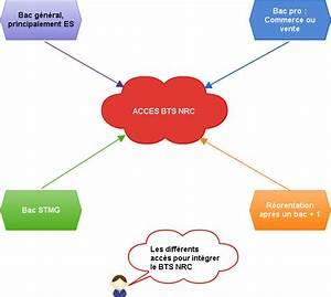 Apres Un Bac Es : tout savoir sur le bts n gociation et relation client programme et d bouch s cnc orientation ~ Maxctalentgroup.com Avis de Voitures