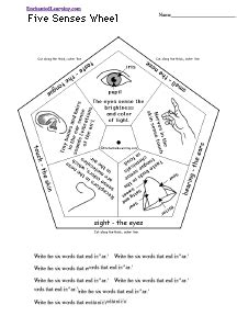 senses wheel printable worksheet enchantedlearningcom