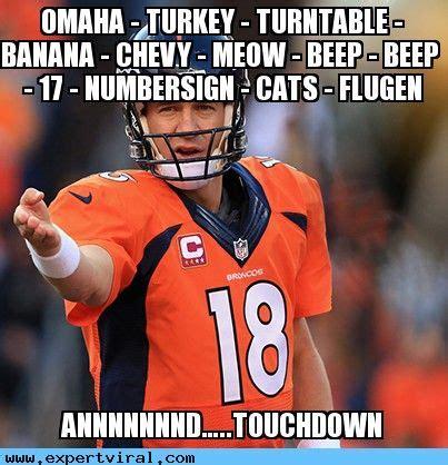 Broncos Funny Memes - 948 best images about denver broncos on pinterest denver broncos womens denver and super bowl