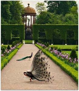 idee allee de jardin 2 cr233er le plus beau jardin avec With decoration allee de jardin 2 creer le plus beau jardin avec le gravier pour allee
