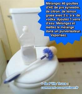 Toilette Chimique Pour Maison : le nettoyant maison pour d sinfecter vos wc efficacement ~ Premium-room.com Idées de Décoration