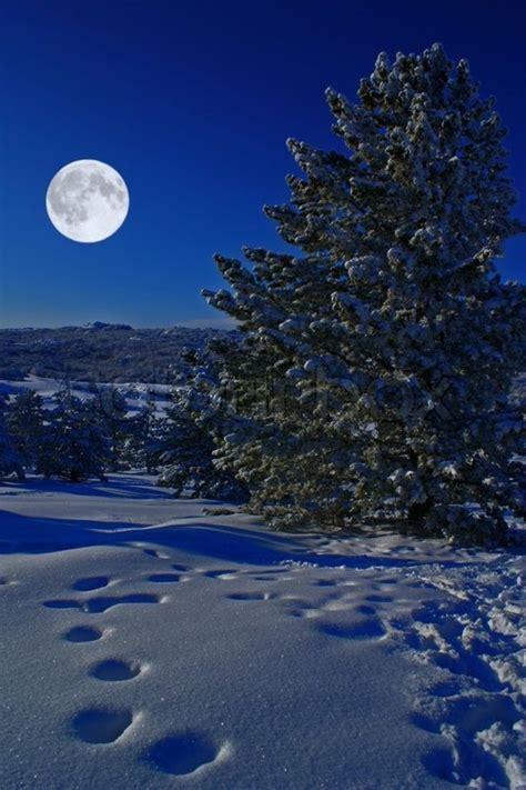 perfect moon lit winter night good night moon