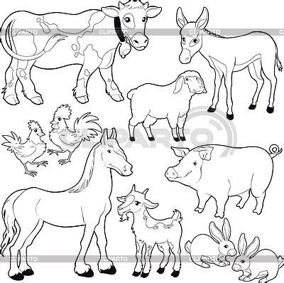 images  wild animals  outline