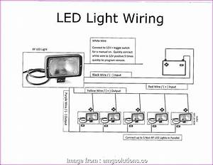 Wiring  Light Switch New Wiring Diagram Of Downlights