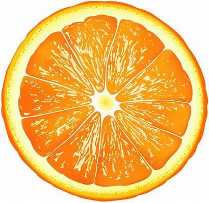 Slice Orange Clip Clipart Fruit Transparent Clipground
