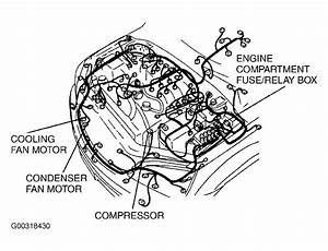 Ac Wiring Diagram For 2005 Kia Sedona  Ac  Free Engine