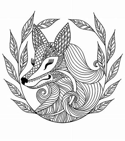 Fox Animals Leaves Coloring Crown Pages Adults