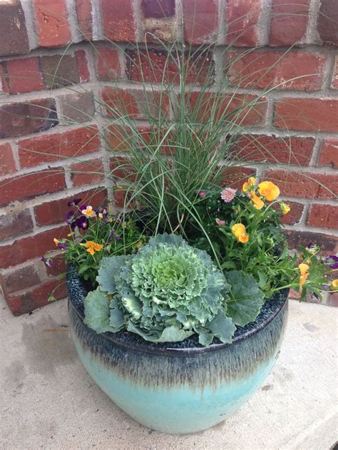 beautiful fall pots ornamental cabbage pansies mums  grass ornamental cabbage fiddle