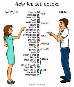 Difference Entre Catalyse Et Pyrolyse : 14 diff rences entre hommes et femmes 2tout2rien ~ Premium-room.com Idées de Décoration