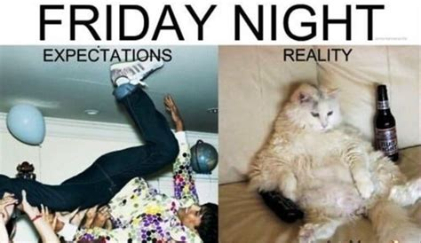 Friday Damn Meme - 54 friday meme pictures that show we all live for the weekend