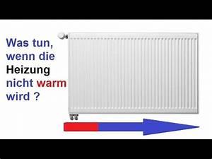 Kachelofen Wird Nicht Warm : heizk rper wird nicht warm zu 70 ist das die l sung ~ Lizthompson.info Haus und Dekorationen