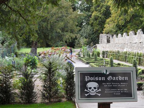 poison gardens poison garden at blarney castle emgam flickr