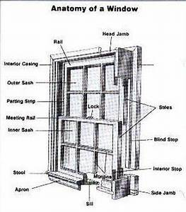 Single Hung Window Parts Diagram Curious About Anatomy Of