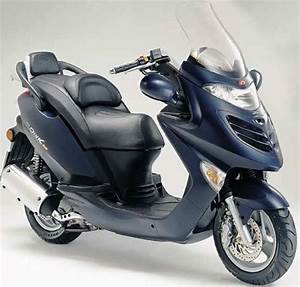Kymco Grand Dink 250 Scooter Service  U0026 Repair Manual
