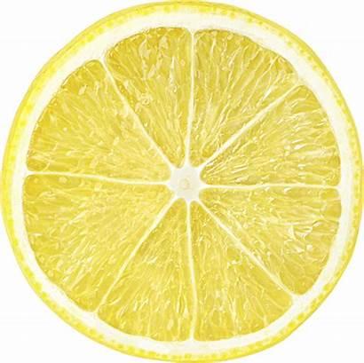 Citrus Tree Yellow California Trees