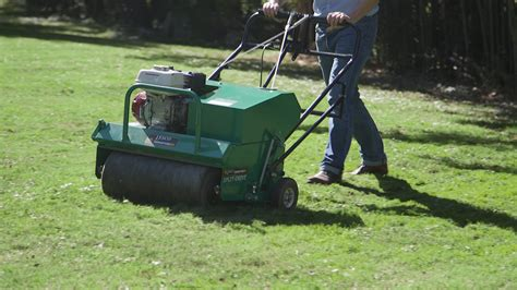 fall lawn care tips aerate soil consumer reports