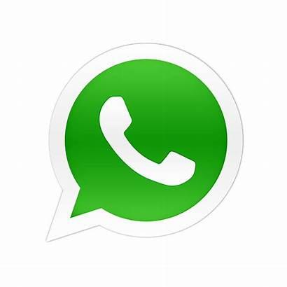 Whatsapp Contacto Escribirme Direccion Numero Llamarme Esta