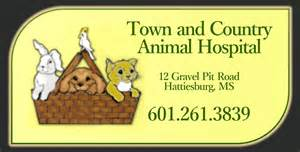 country creek animal hospital town and country animal hospital town and country animal