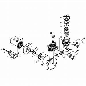 Sta Rite Pool Pump Parts Diagram