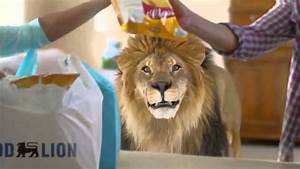 Food Lion Feeds Commercial