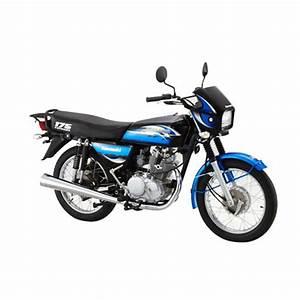 Kawasaki Barako 175 Electric