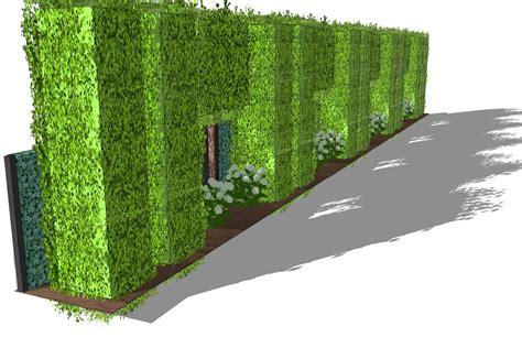 immergrüne bepflanzungen am gartenzaun sichtschutzkombinationen teil 6 sichtschutz mit