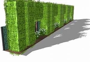 Hecke Als Sichtschutz : sichtschutzkombinationen teil 6 sichtschutz mit ~ Michelbontemps.com Haus und Dekorationen