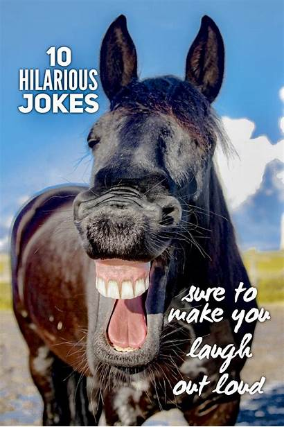 Laugh Jokes Hilarious Loud Sure Humor Need