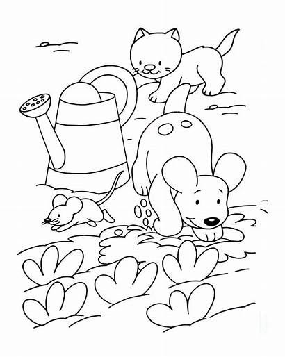 Cat Dog Mouse Coloring Animals Pages Adult