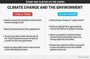 climate change solutions essay
