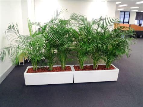 Image Of Indoor Planters Home Depot Modern Ideas Best