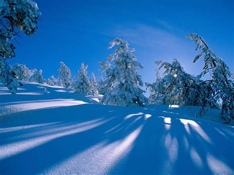 Background Winter Theme by Wallpaper Winter Desktop Wallpapers And Backgrounds